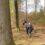 Pilgrimsvandring ved Frisenborg skovene